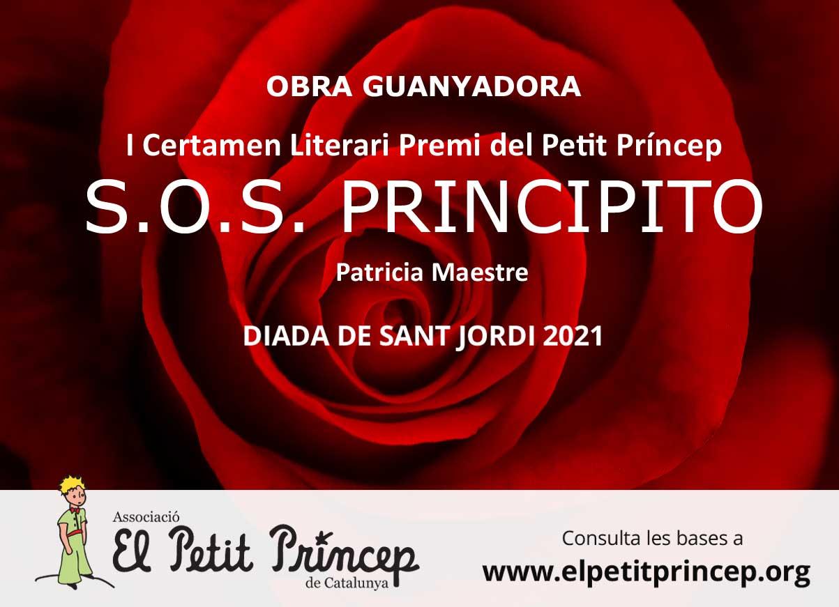 Banner_Sant-Jordi_IG2